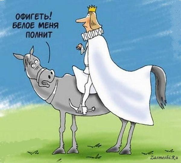 Открытки днем, смешные картинки принц на коне