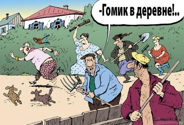 мемы гомик в деревне