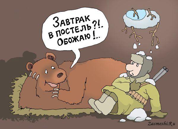 Открытки виньетки, анекдоты про медведей картинки