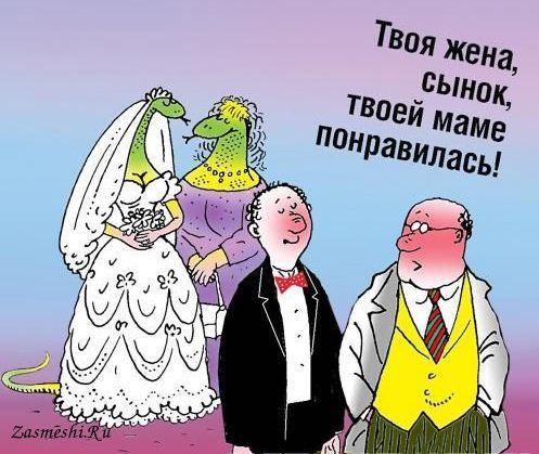 Открытку днем, картинки к свадьбе свекровь прикольные