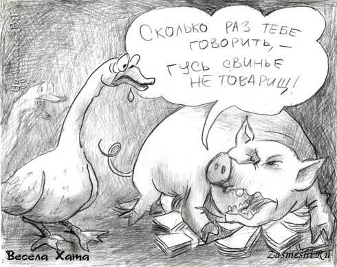 картинка к пословице гусь свинье не товарищ является