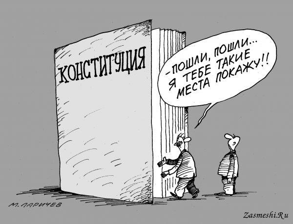 https://zasmeshi.ru/data/caricature/medium/96-Konstituciya.jpg