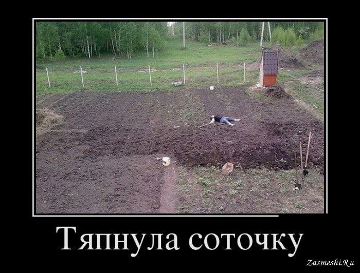 Картинки по запросу смешные картинки про дачу и огород