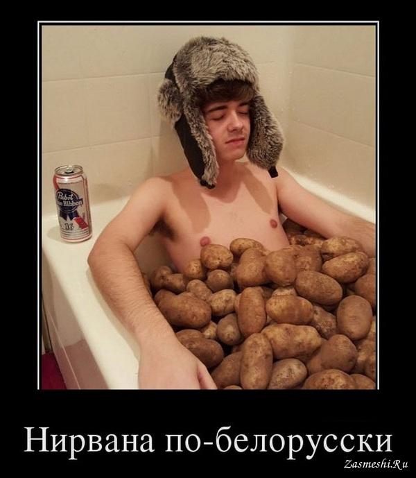 Демотиваторы о белоруссии