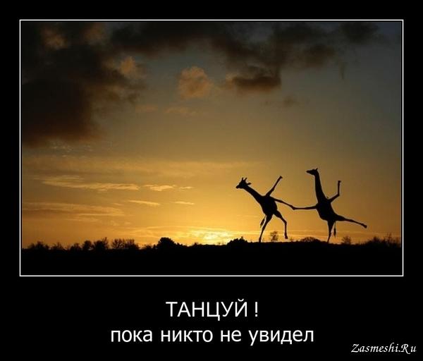 Открытка танцуй пока молодой, красивые классные картинки