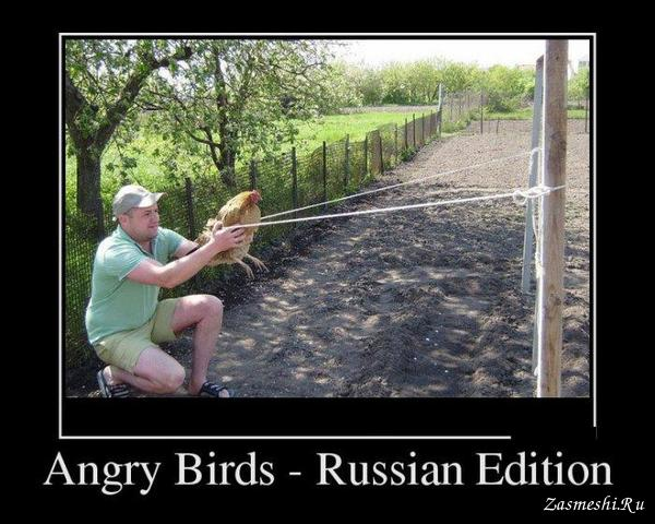 Демотиватор - Angry Birds – Russian Edition