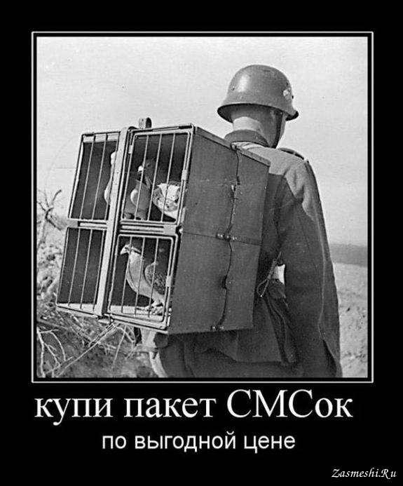 габриэль немецкий солдат демотиватор чем завести померанского