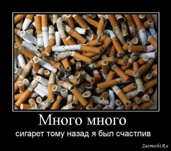 Поздравление днем, картинки сигареты смешные