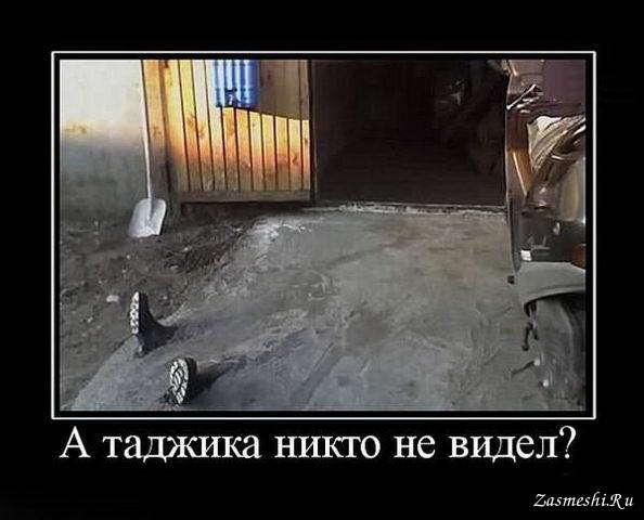 покупаются поселке смешные картинки приколы таджикский платок легкой