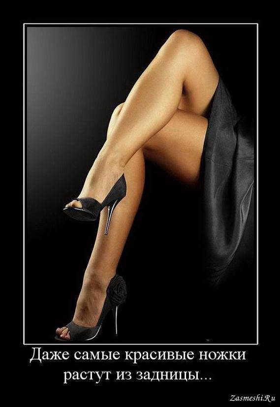 Теща с зятем красивые ножки