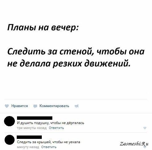 Шноравор армянском, смешные картинки про планы на вечер