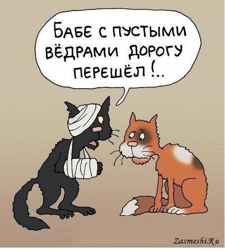 """""""Реформы в прокуратуре сегодня полностью приостановлены"""", - Сакварелидзе - Цензор.НЕТ 5105"""