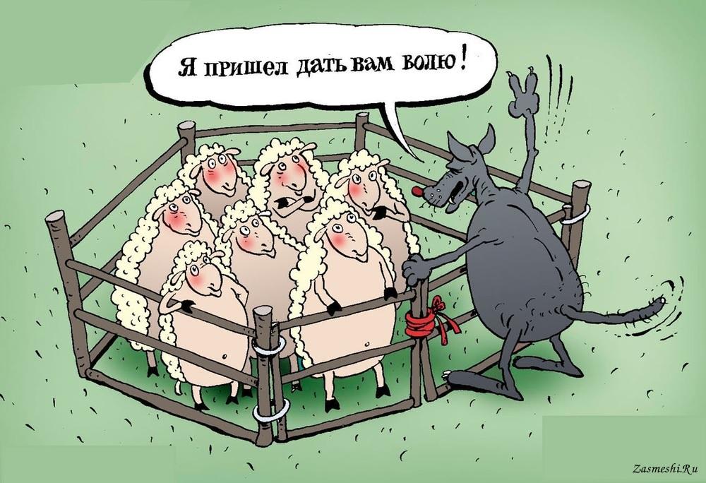 Анекдот Про Баранов Черных