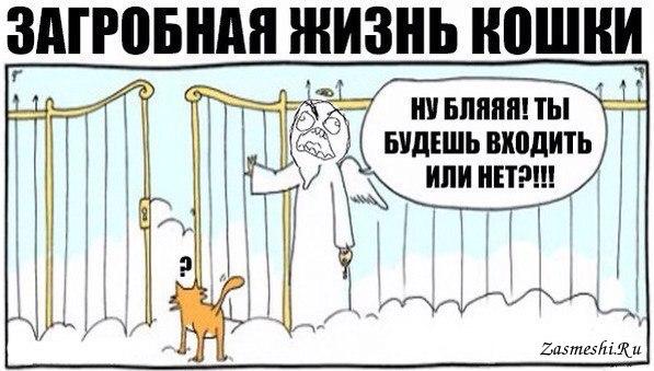 Загробный анекдот