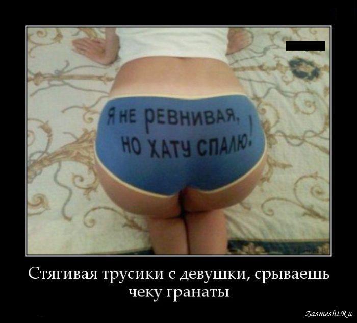 http://zasmeshi.ru/data/demotivator/big/550-YA-ne-revnivaya.jpg