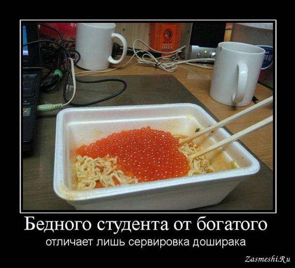Про бедного студента 9 фотография