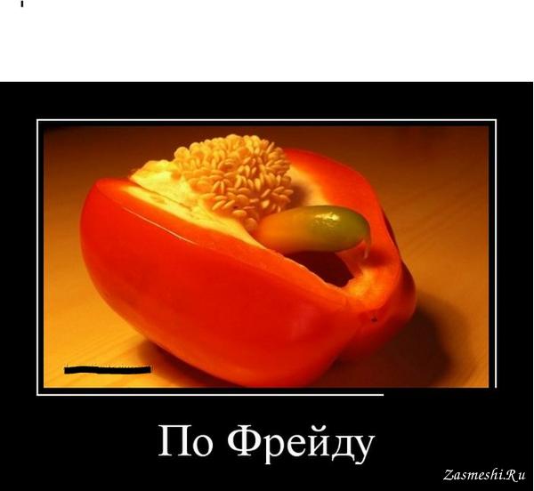 Анекдот Про Перец