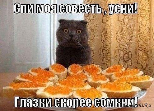 http://zasmeshi.ru/data/photomatrix/big/699-Sovest-ne-dremlet.jpg